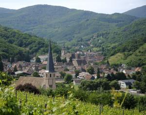 Alsace (les vins d'Alsace)
