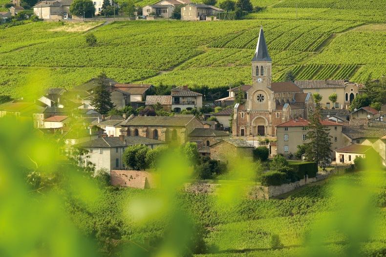 Le village de Juliénas, à peine 900 habitants entouré de ses 597 ha de vignes.