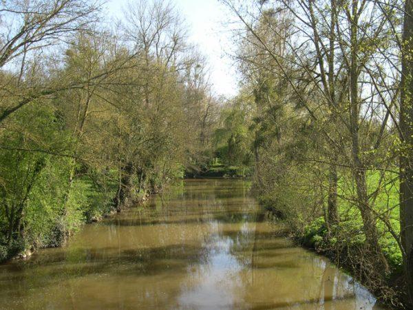 Le Layon (Coteaux du Layon) Anjou (Loire)
