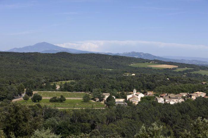 A Uchaux (Massif d'Uchaux) le Domaine Saint-Michel.