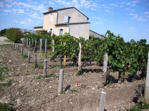 Petite maison dans les vignes de château Margaux