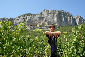 Pic Saint-Loup (AOC Pic Saint-Loup) Languedoc