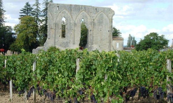 Saint-Emilion Grands Crus Classés et Premiers Grands Crus Classés A et B (Bordeaux)