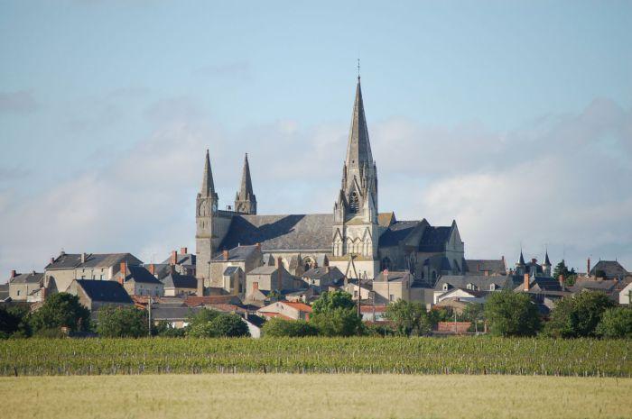Vue du vignoble, la collégiale du Puy-Notre-Dame
