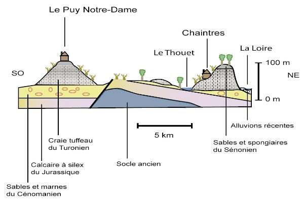 Carte géologique du Saumur Puy-Notre-Dame