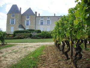 Yquem (château d'Yquem) Sauternes