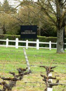 Le vignoble de Chenonceaux borde le parc du Château