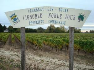 Noble Joué (Touraine-Noble Joué) Loire