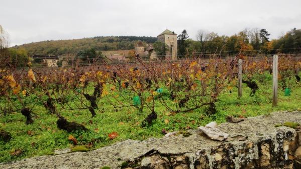 Château de Gevrey-Chambertin Côte de Nuits