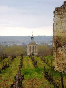Vignoble de Vouvray et le clocher de son église