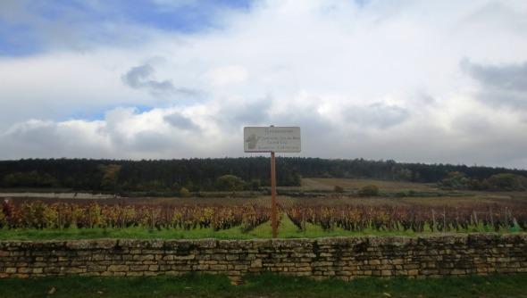 Chambertin-Clos de Bèze côtoyant Chambertin (Photo FC)