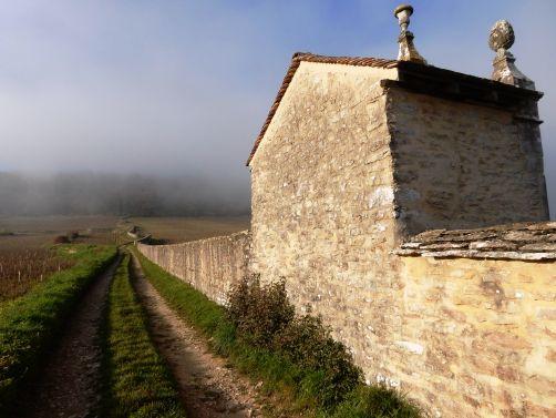 Gevrey-Chambertin, le Clos Saint-Jacques