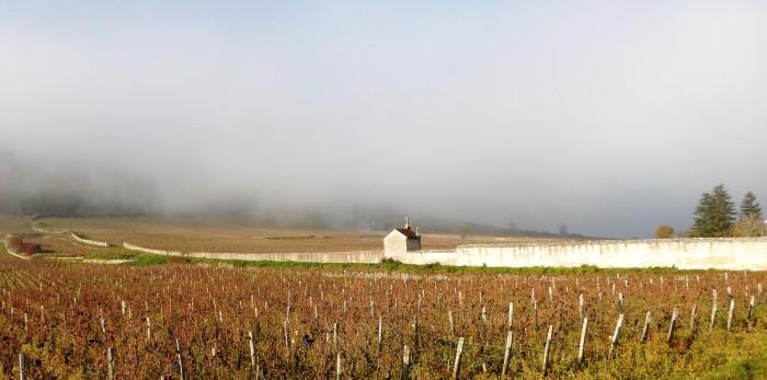 Gevrey-Chambertin, vers la Combe de Lavaux