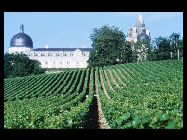 Clos du château de Valençay