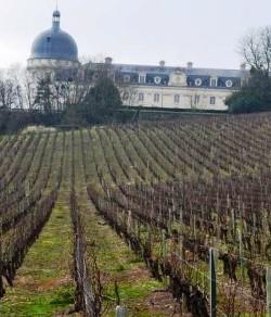 Valençay (AOC Valençay) Berry (Loire)
