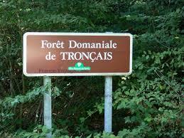 Tronçais (forêt de Tronçais)
