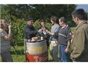 Les vins de Tuscan