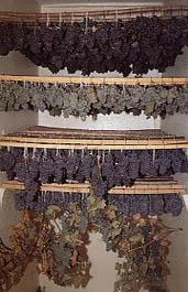 Vin de paille (Jura, Hermitage) et Vin Paillé de Corrèze