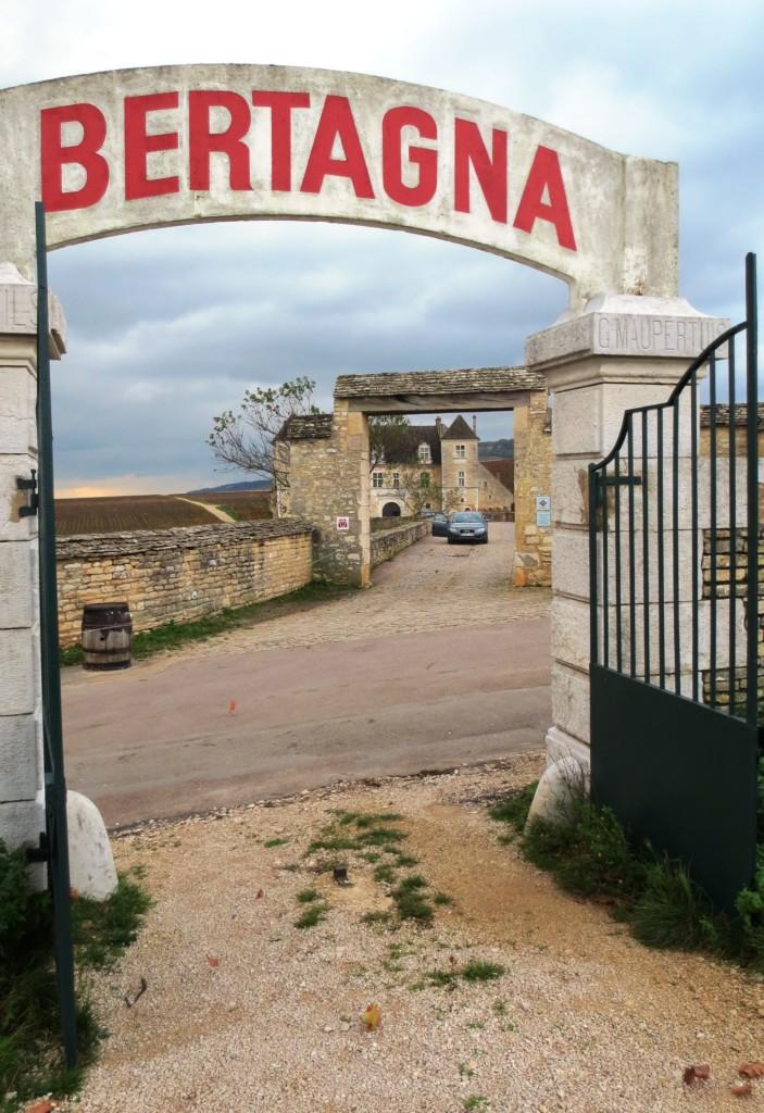 Vougeot, Domaine Bertagna avec en prespective, le château du Clos de Vougeot