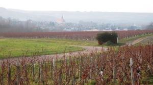 Yonne, vignobles de l'Yonne dont Chablis (Bourgogne)