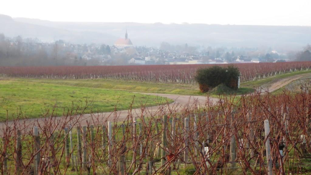 Chablis, vignoble de l'Yonne