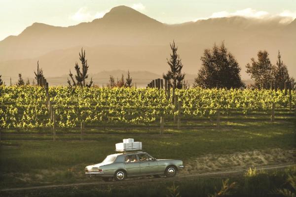 Chardonnay Nouvelle Zélande