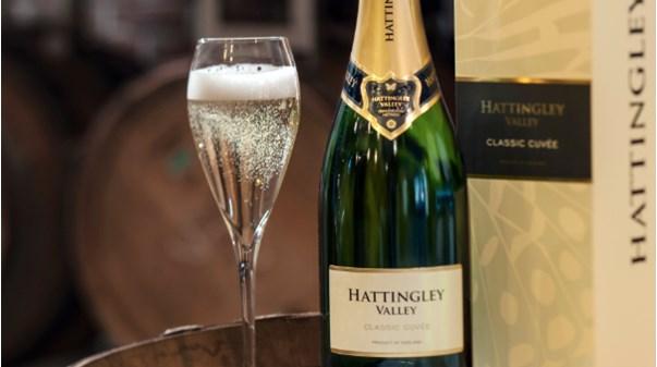 Pommery en partenariat avec domaine Hattingley Valley dans le Hampshire, va produire des sparkling wines anglais.