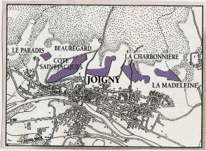 Carte du vignoble de Joigny