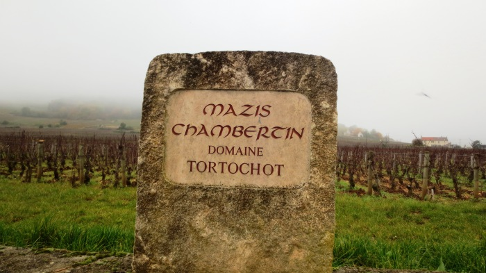 Mazis-Chambertin