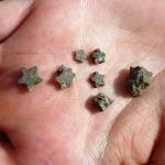 Pentacrines, fossiles en forme d'étoile
