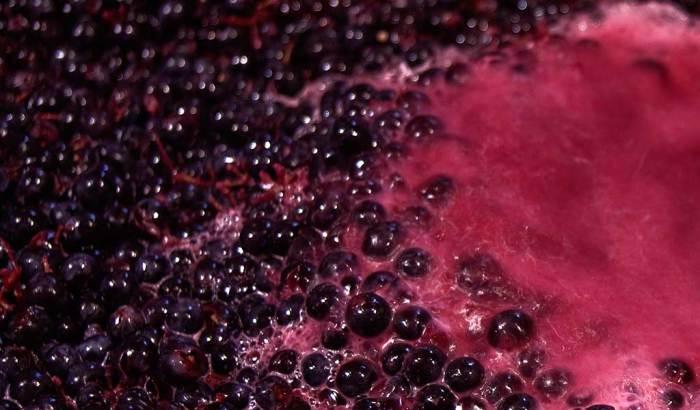 L'acétaldéhyde est un composé chimique produit par les levures  au cours de la fermentation alcoolique