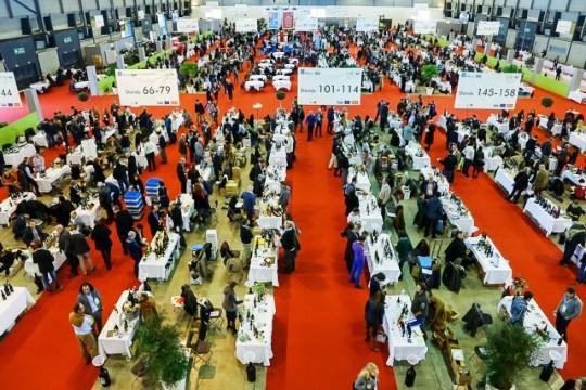 Millésime Bio, mondial du vin biologique 2015