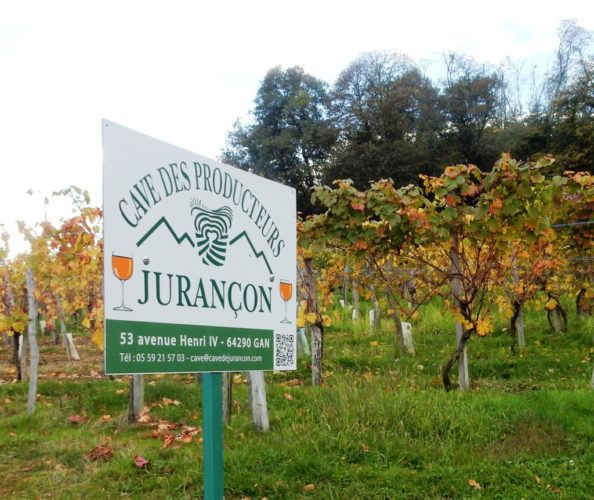 Jurançon (le Jurançon) sud-ouest