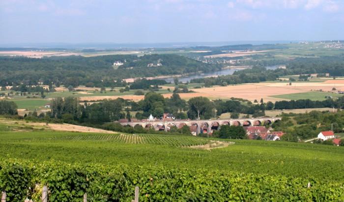 La Loire et le suavignon blanc