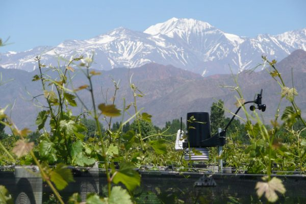 Climat, changement climatique et la vigne