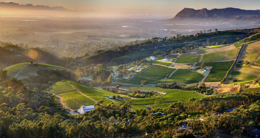 Afrique du Sud, Constantia Valley avec en contre bas, le vignoble de Constantia Glen