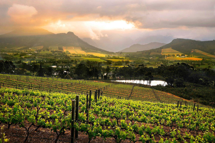 Afrique du Sud, le district de Franschhoek