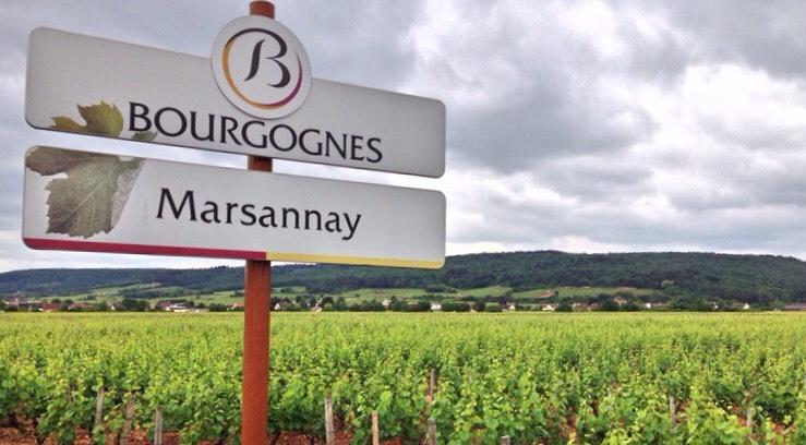 Marsannay Route des Grands Crus