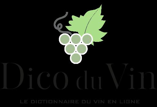 cropped-cropped-Dico-du-vin-logo-noir-carre.png