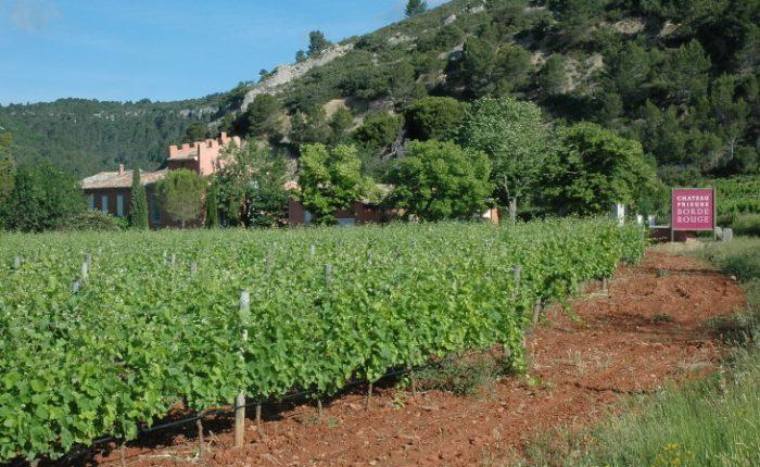 Dans les Corbières, le terroir de Lagrasse