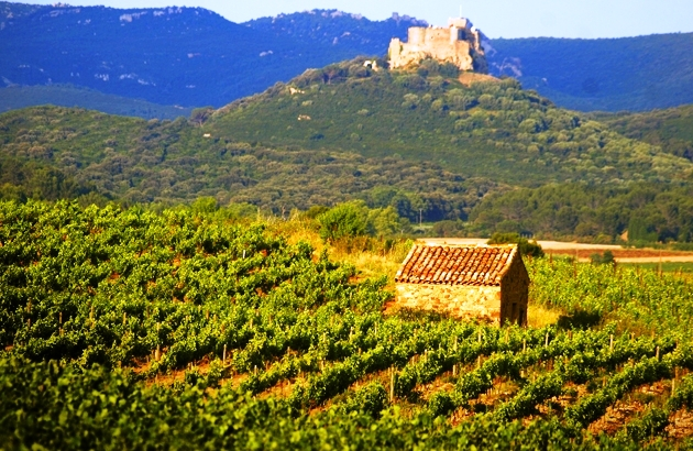 Le Corbières château de Quéribus