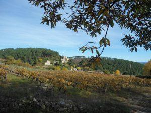 Vignoble du Pays Beaume Drobie, en Cévennes d'Ardèche où l'on côtoie les crêtes du Tanargue et le plateau calcaire