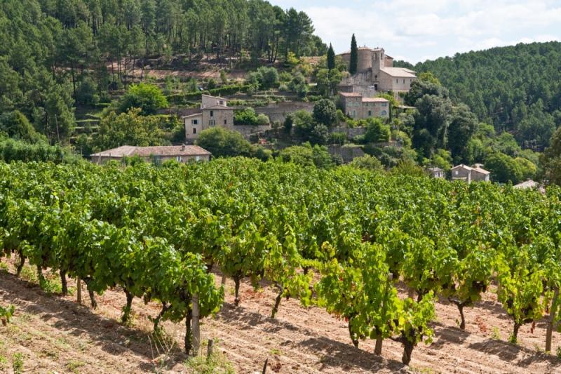 Vignoble Ardèche