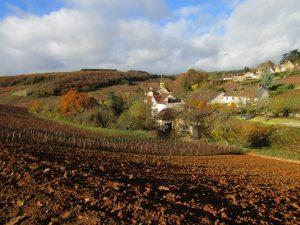 De la Montagne de Corton, le village de Pernand-Vergelesse