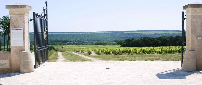 Clos Rocher, Champagne Gremillet