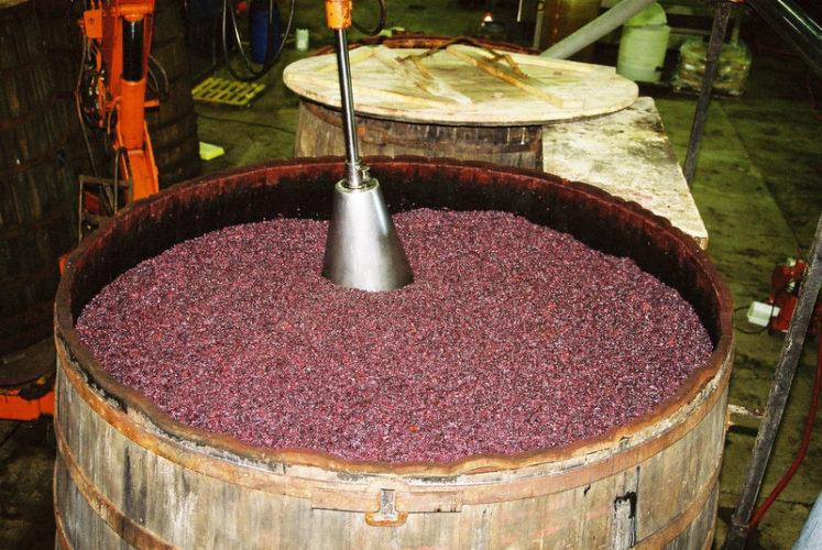 Pigeage/Remontage/Délestage (techniques d'extraction du raisin)