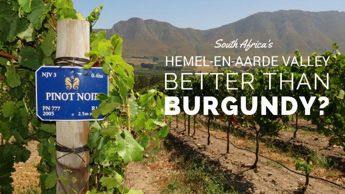 Hemel-en-Aarde Valley, nouveau secteur viticole de l'Afrique du Sud près d'Hermanus