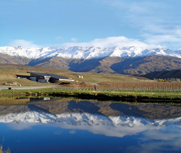 Vignoble du Central Otago dans l'île du sud