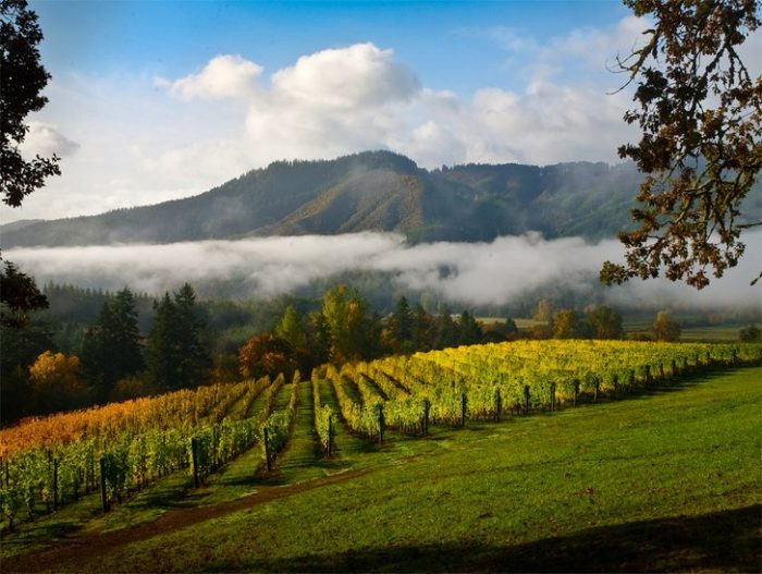 Oregon, Willamette Valley