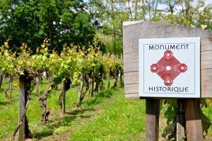 Parcelle de vigne de Sarragachies